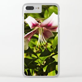Letting it all down Clear iPhone Case