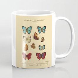 Lycaenidae Coffee Mug