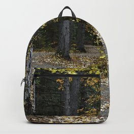 Autumn Path Backpack