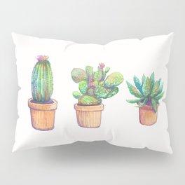 evolution cactus to pineapple Pillow Sham