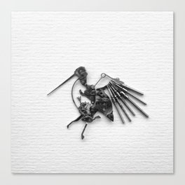 Rad's Birds Canvas Print