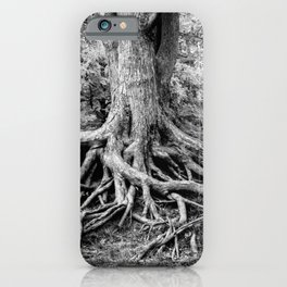Tree of Life and Limb iPhone Case