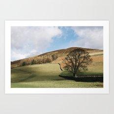 Sunlit tree and hillside. Edale, Derbyshire, UK. Art Print