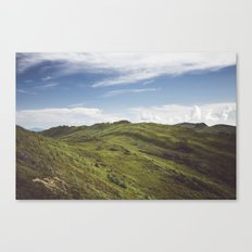 Bukowe Berdo Canvas Print