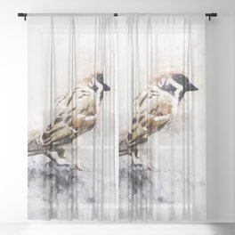 European House Sparrow Watercolour Painting Watercolor Illustration Sheer Curtain