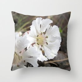 Watercolor Flower, Sea Campion 02, Heimaey Island, Iceland Throw Pillow