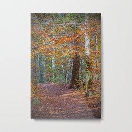 Rust Fall Forest Metal Print
