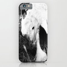 The Skull of a Cow Slim Case iPhone 6s