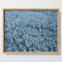 Winter pine forest aerial - Landscape Photography Serving Tray