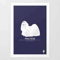 Maltese Art Print