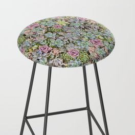 Succulent Pastel Bar Stool