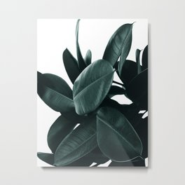 Dark Green Rubber Plant Metal Print