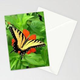 Butterfly on Zinnia 3 Stationery Cards
