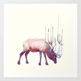 Elk // Solitude Art Print