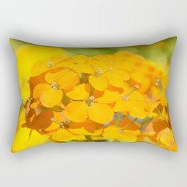Orange Delight Rectangular Pillow