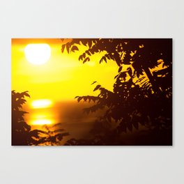 Dreaming in Paradise Canvas Print