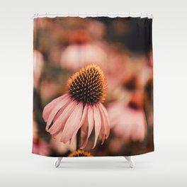 echinacea flowers Shower Curtain