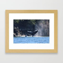 A Whale of a Tale Framed Art Print
