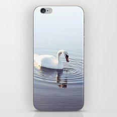 the beautiful swan iPhone & iPod Skin