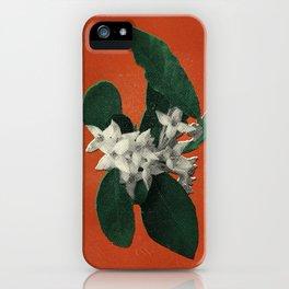 Invasive Species Series: Autumn Olive iPhone Case
