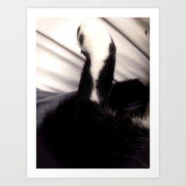 Black and white Cat Paw Art Print
