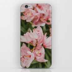 Ice-Cream Orchids iPhone & iPod Skin