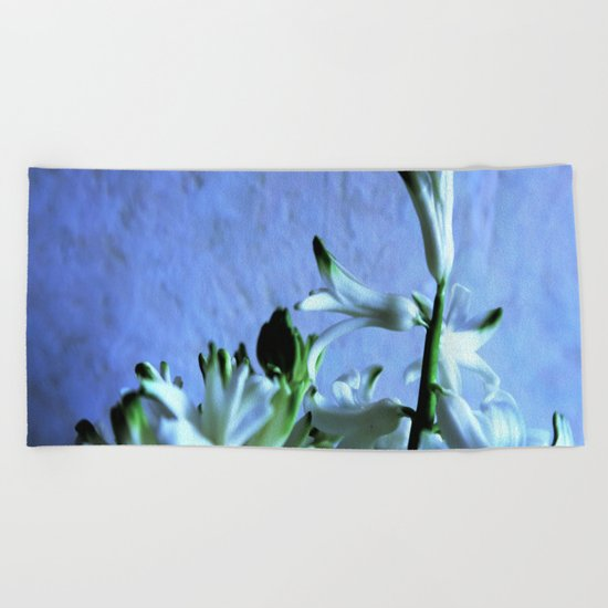 white hyacinthe on light blue background Beach Towel