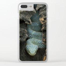 Blue Bush Viper in Hollow Log Clear iPhone Case