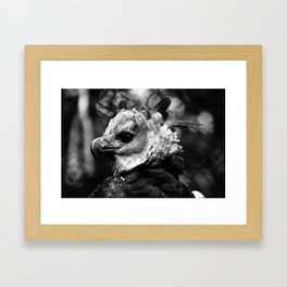 The Harpie Framed Art Print