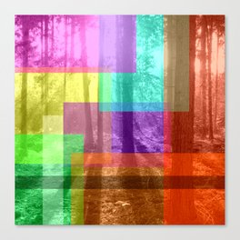 A Forest With Color Canvas Print