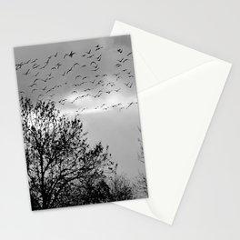 wildlife Stationery Cards