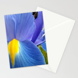 Blue Iris, 2012 Stationery Cards