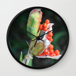 Red seeds Wall Clock
