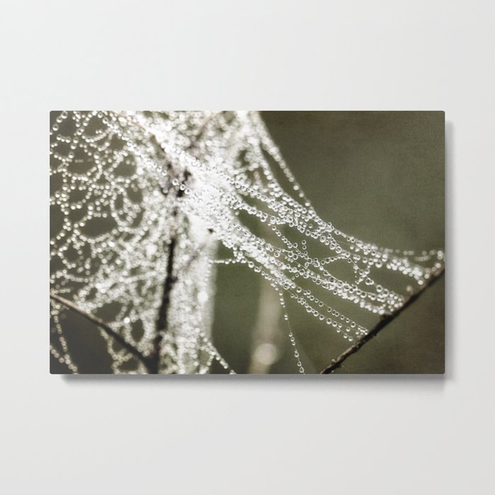 the work of a spider Metal Print