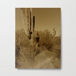 Cacti II Metal Print