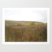 Fall field Art Print