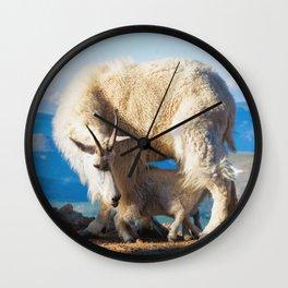 Mountain Goats Nanny and Kid Mount Evans Colorado USA Wall Clock
