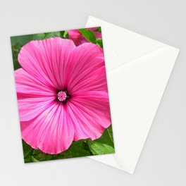 mallow bloom IV Stationery Cards