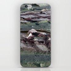 Landscape 3310C iPhone & iPod Skin