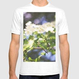 Summer Dalliance; T-shirt