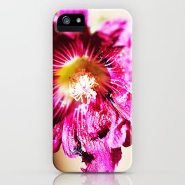 Musk Mallow iPhone Case