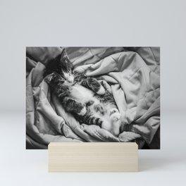 Relax, Take a Catnap Mini Art Print