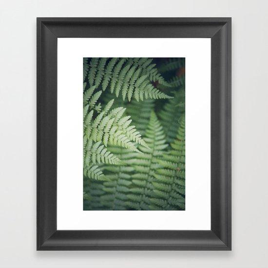 Where the Redwood Fern Grows Framed Art Print