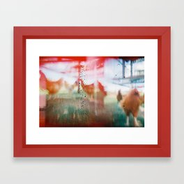 Happy Chickens Come From Barbados Framed Art Print