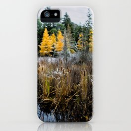 A Song Softly Sung iPhone Case