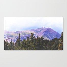 Survey Canvas Print