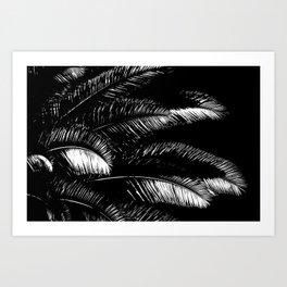 Tropical Darkroom #449 Art Print
