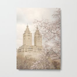 Central Park Blossom #2 Metal Print