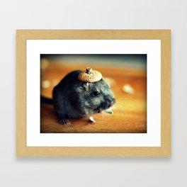Gerbil Wearing An Acorn Cap Framed Art Print