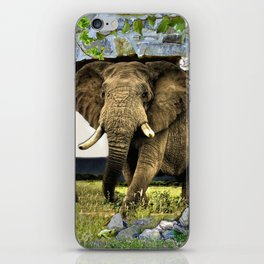 African Elephant iPhone Skin